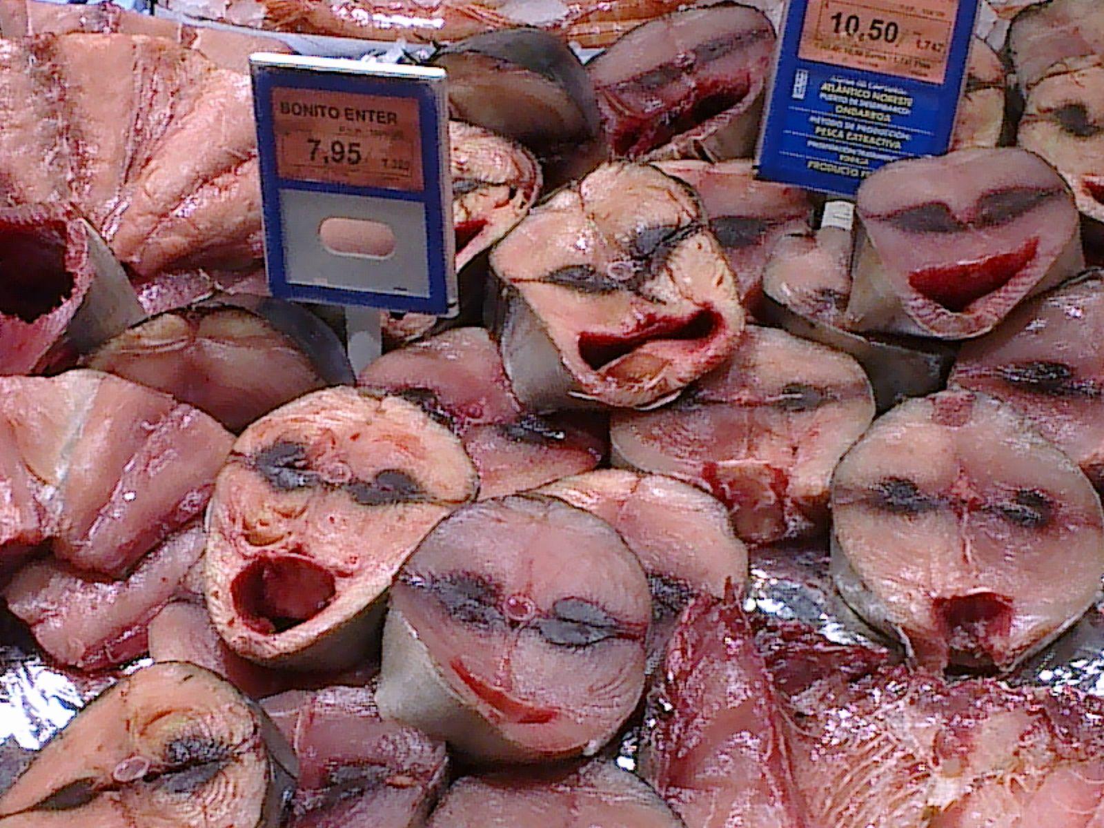 http://manuelpereiragonzalez.blogspot.com/2011/09/humor-pescado-haciendo-muecas.html